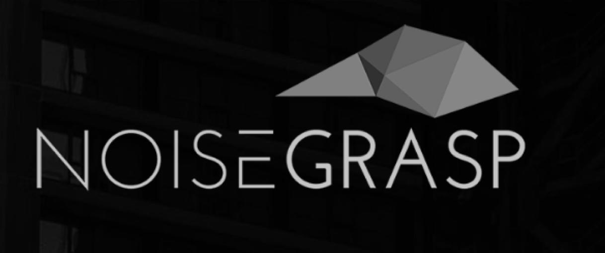 Noisegrasp