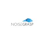 Noise Grasp
